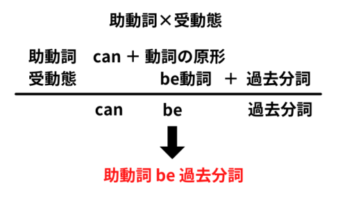 助動詞×受動態
